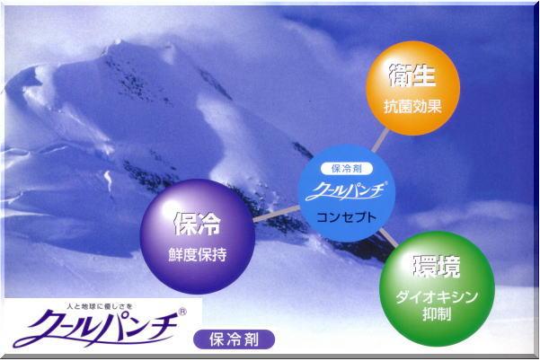 クールパンチ(別売保冷剤)